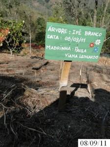 asa_2011_paulavianaleonardo_02