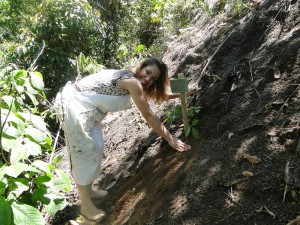 Ana Paula Santos - ipe amarelo 30 dez 14